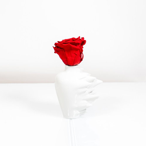 Rosenthal Vase Fast mit 1 Infinity Rose