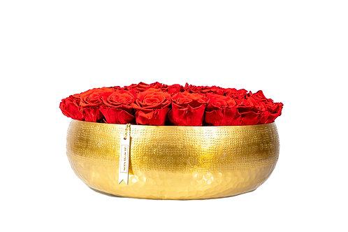 Golden Hour mit 42 Infinity Rosen
