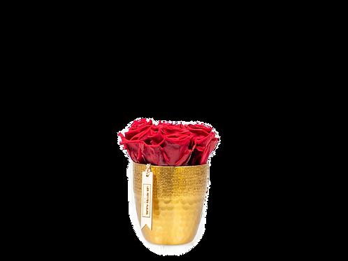 Golden Cutie mit 3 - 5 Rosen