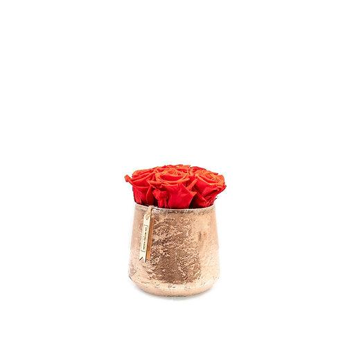 Sparkling Rose mit 6 - 8 Infinity Rosen