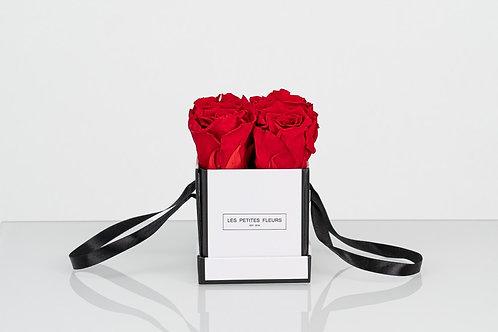 Rosenbox Little Beauty mit 4 Infinity Rosen