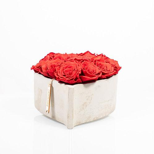 Concrete Romance mit 14-16 Infinity Rosen