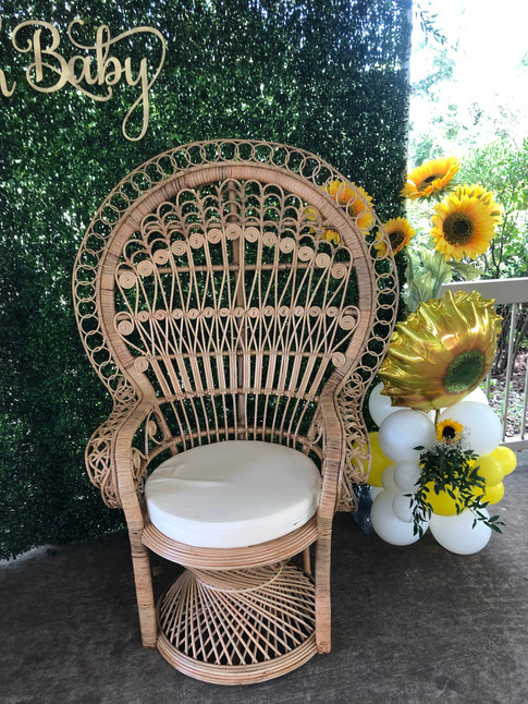 Peacock Chair $150.00