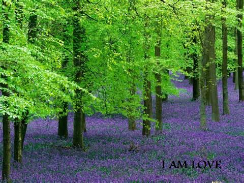 @realness112 I Am Love!!