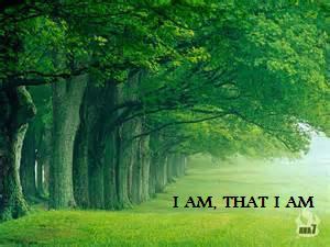 @realness112 I Am, That I Am!!