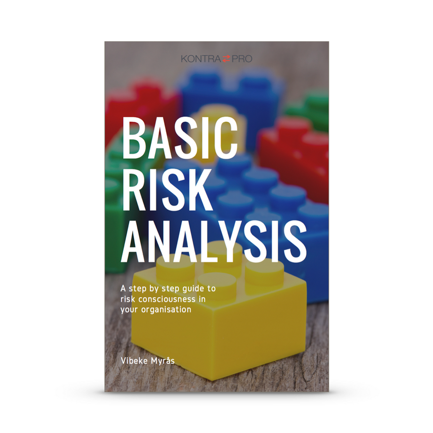 Basic Risk Analysis front page on white.
