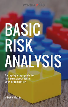 Basic Risk Analysis e-book
