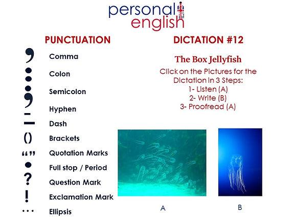 Dictation #12