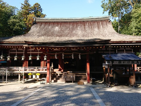 奈良20201112(石上神宮~三輪山~明日香:巨石群)