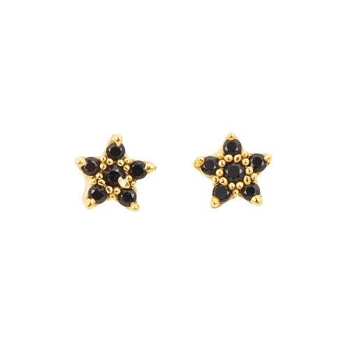 Puces étoile en plaqué or et pierres semi-précieuses