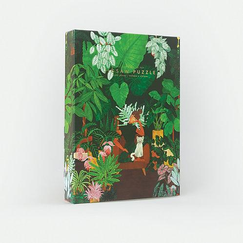 Puzzle Lady Plant