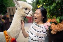 Ground_Alexandria_Atrium_GHP-49_grounds_alexandria_atrium_sydney_wedding_photography_alpaca_kisses_1500