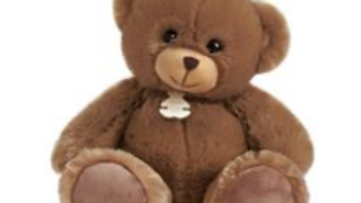 Histoire d'Ours Bellydou Bear