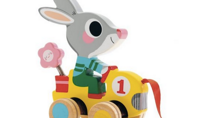 Djeco Pull Along Toy Roulapic
