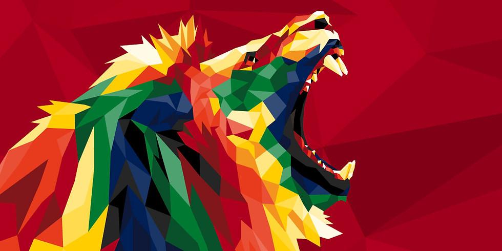 Springboks v Lions