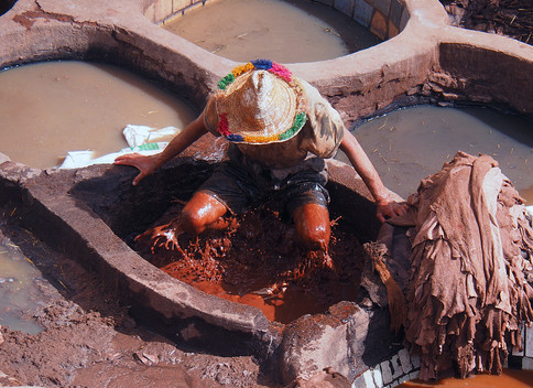 Tannery, Fez, Morocco