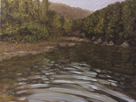 A quick dip in Broadhead Creek
