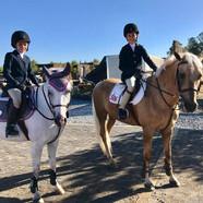 2 ponies.jpg