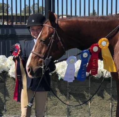 Reins and ribbons.jpg