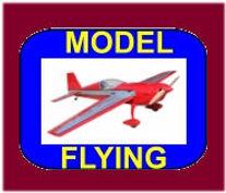 #02A Flying JPG Icon.jpeg