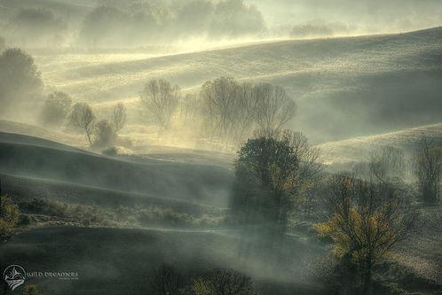 Mystic-Fog.jpg