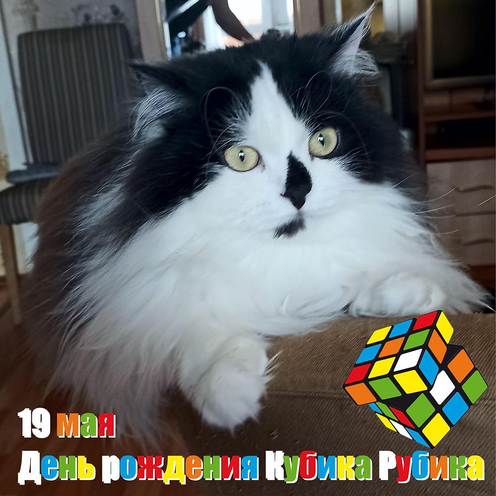 19 мая 2021 г. День рождения Кубика Рубика