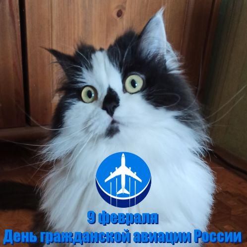 09 февраля 2021 г. День гражданской авиации России