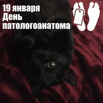 19 января 2021 г.  День патологоанатома