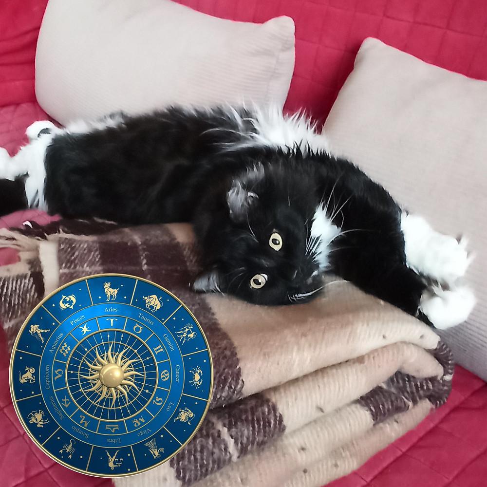 20 марта 2020 г. Международный день астрологии