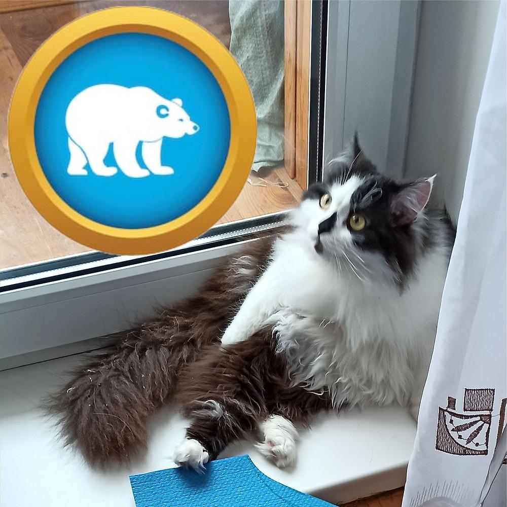 27 февраля 2020 г. Международный день полярного медведя