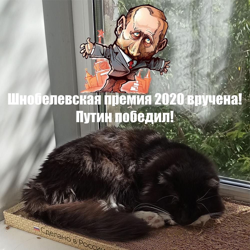 19 сентября 2020 г. Шнобелевская премия 2020 вручена