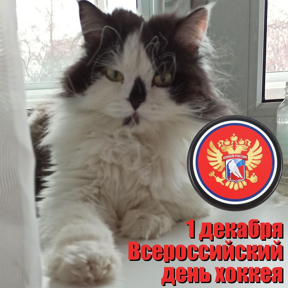 01 декабря 2020 г. Всероссийский день хоккея