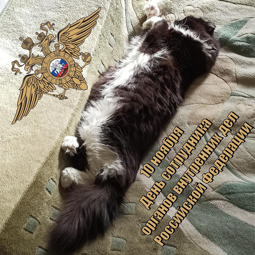10 ноября 2020 г. День сотрудника органов внутренних дел Российской Федерации