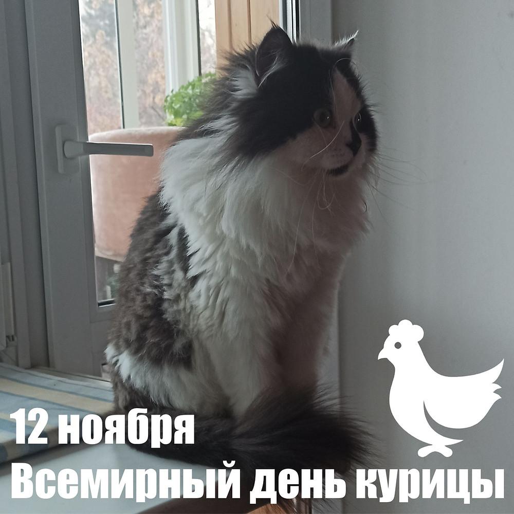12 ноября 2020 г. Всемирный день курицы