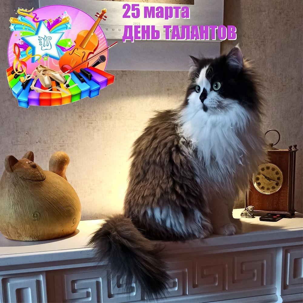 25 марта 2021 г. Международный день талантов