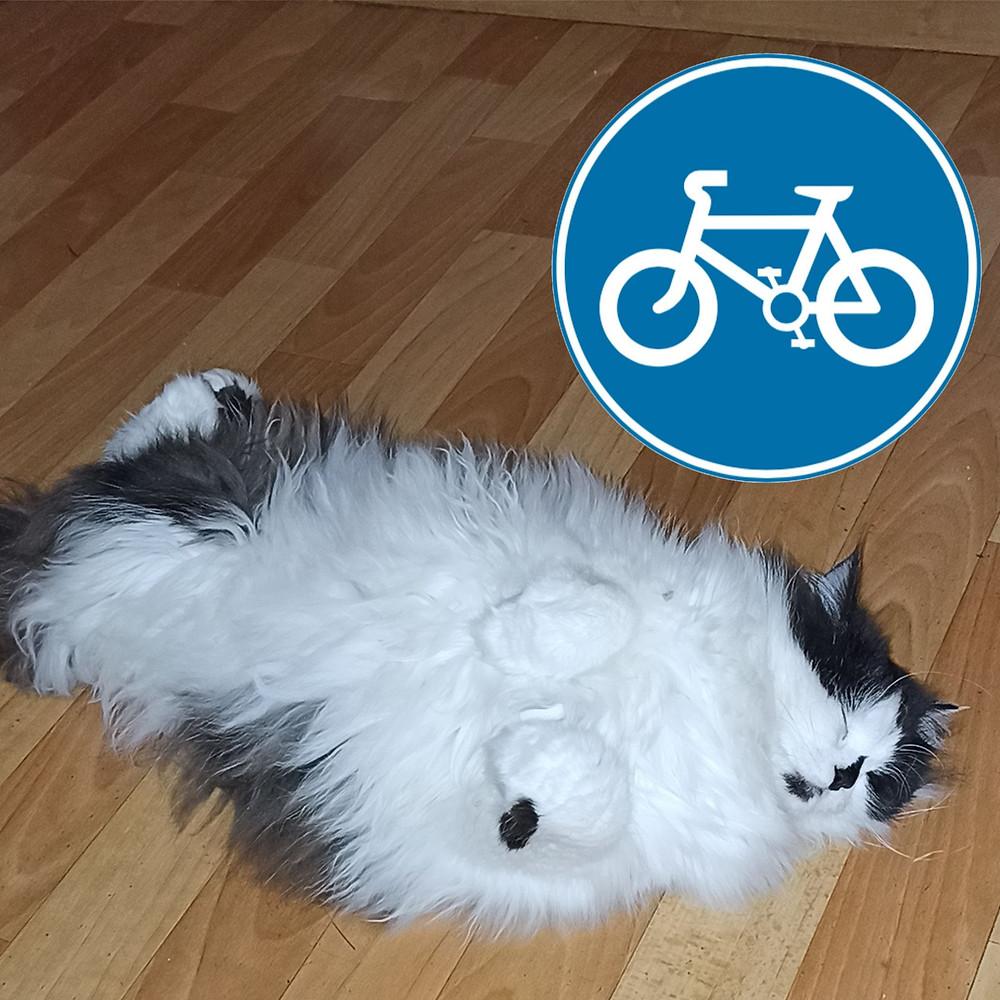 03 июня 2020 г. Всемирный день велосипеда