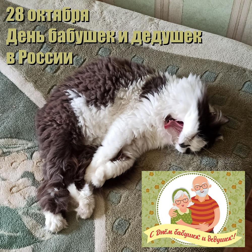 28 октября 2020 г. День бабушек и дедушек в России