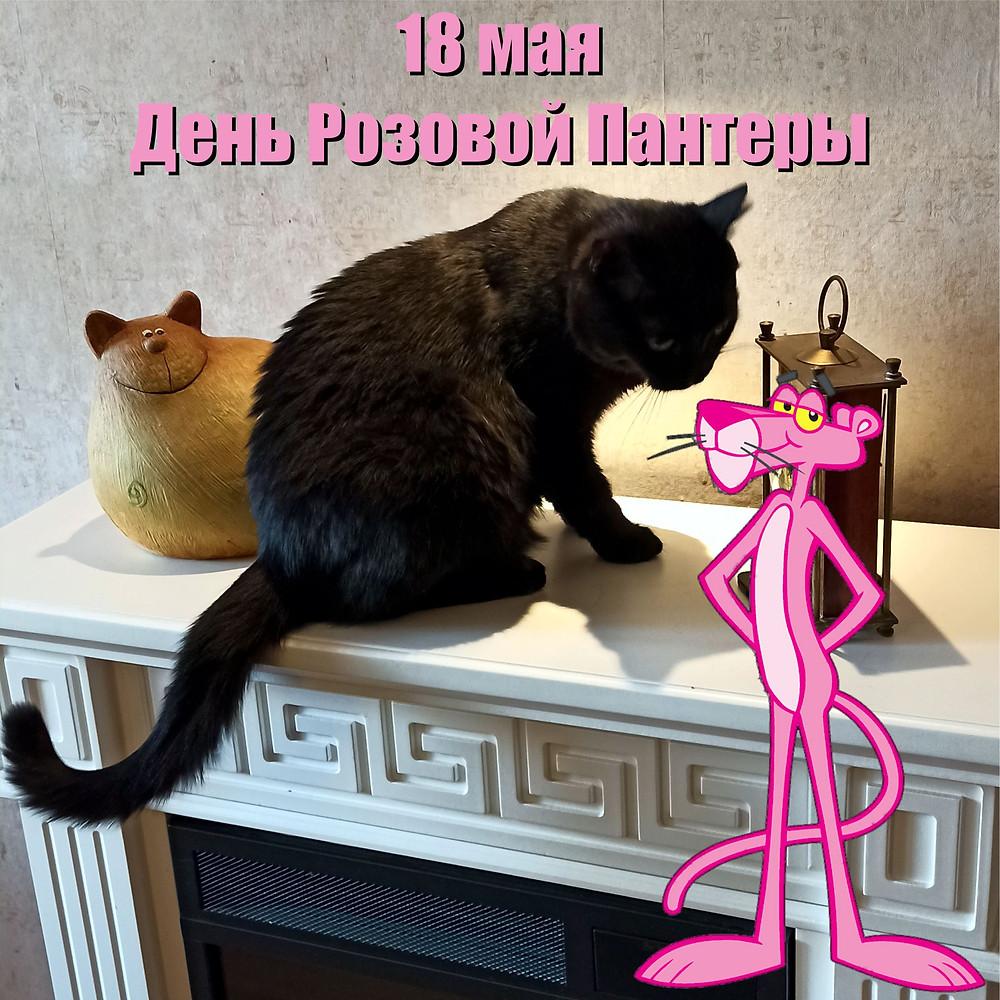 18 мая 2021 г. День Розовой Пантеры
