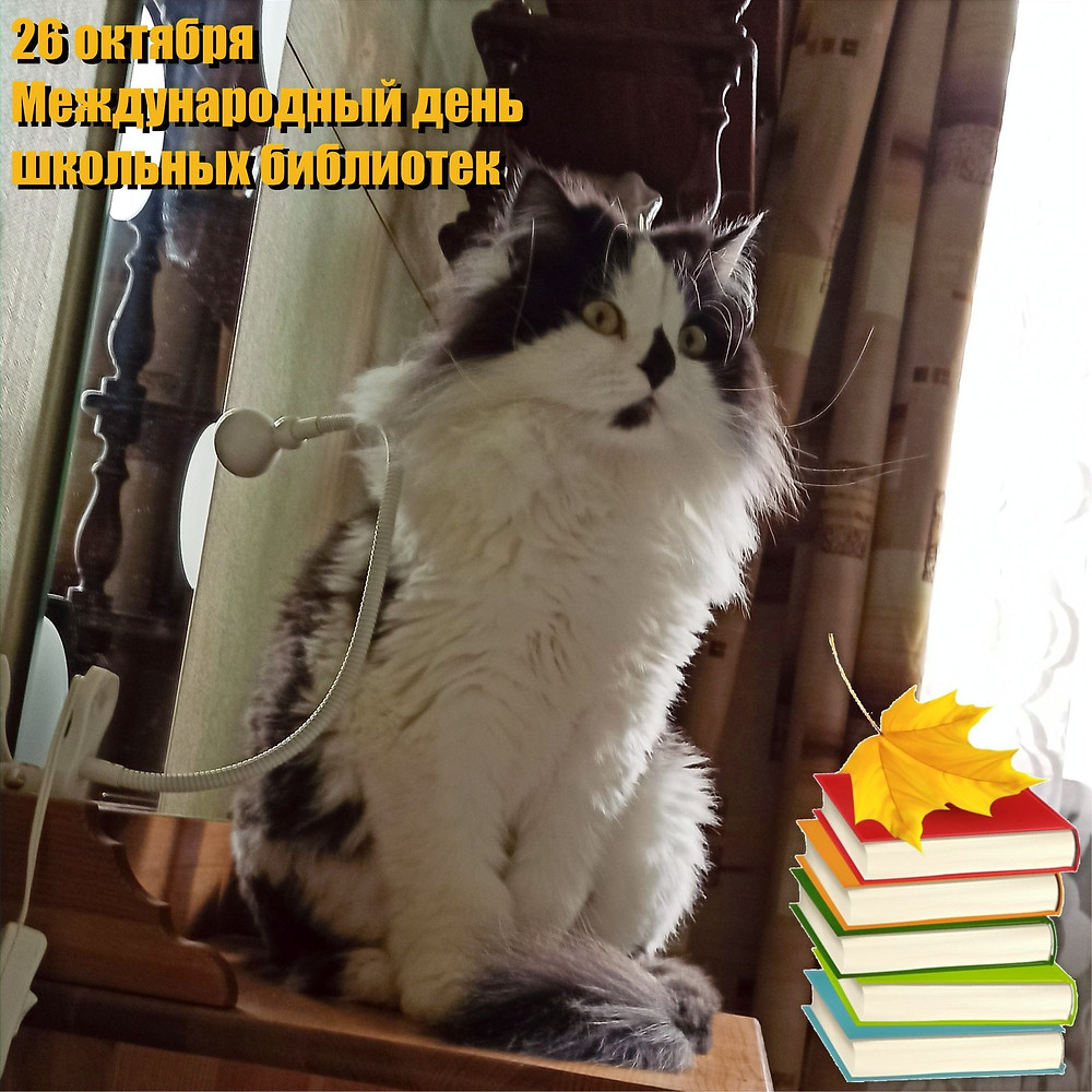 26 октября 2020 г. Международный день школьных библиотек