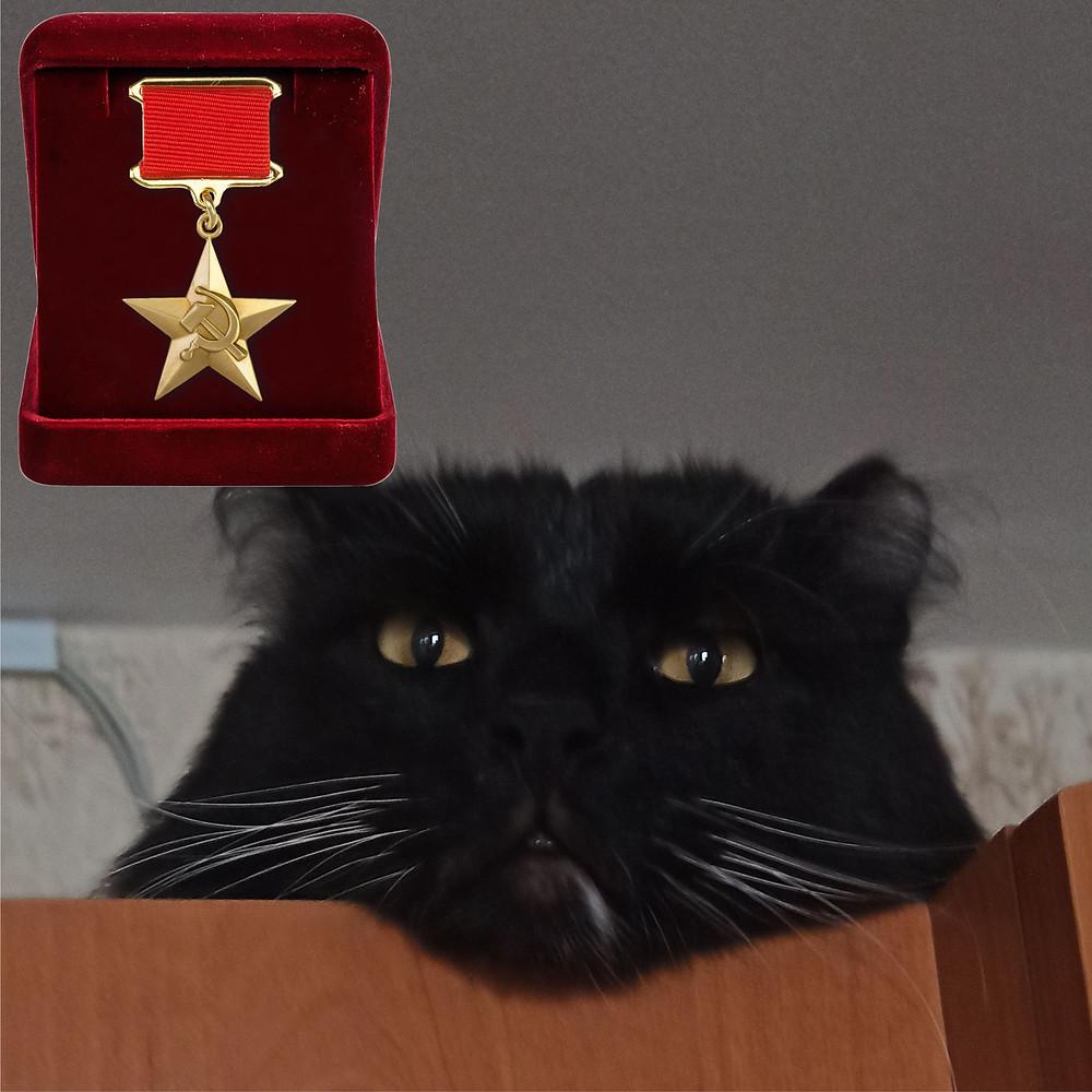 22 мая 2020 г. 80 лет назад  В СССР учреждена медаль «Серп и Молот» – знак отличия Героя Социалистического Труда