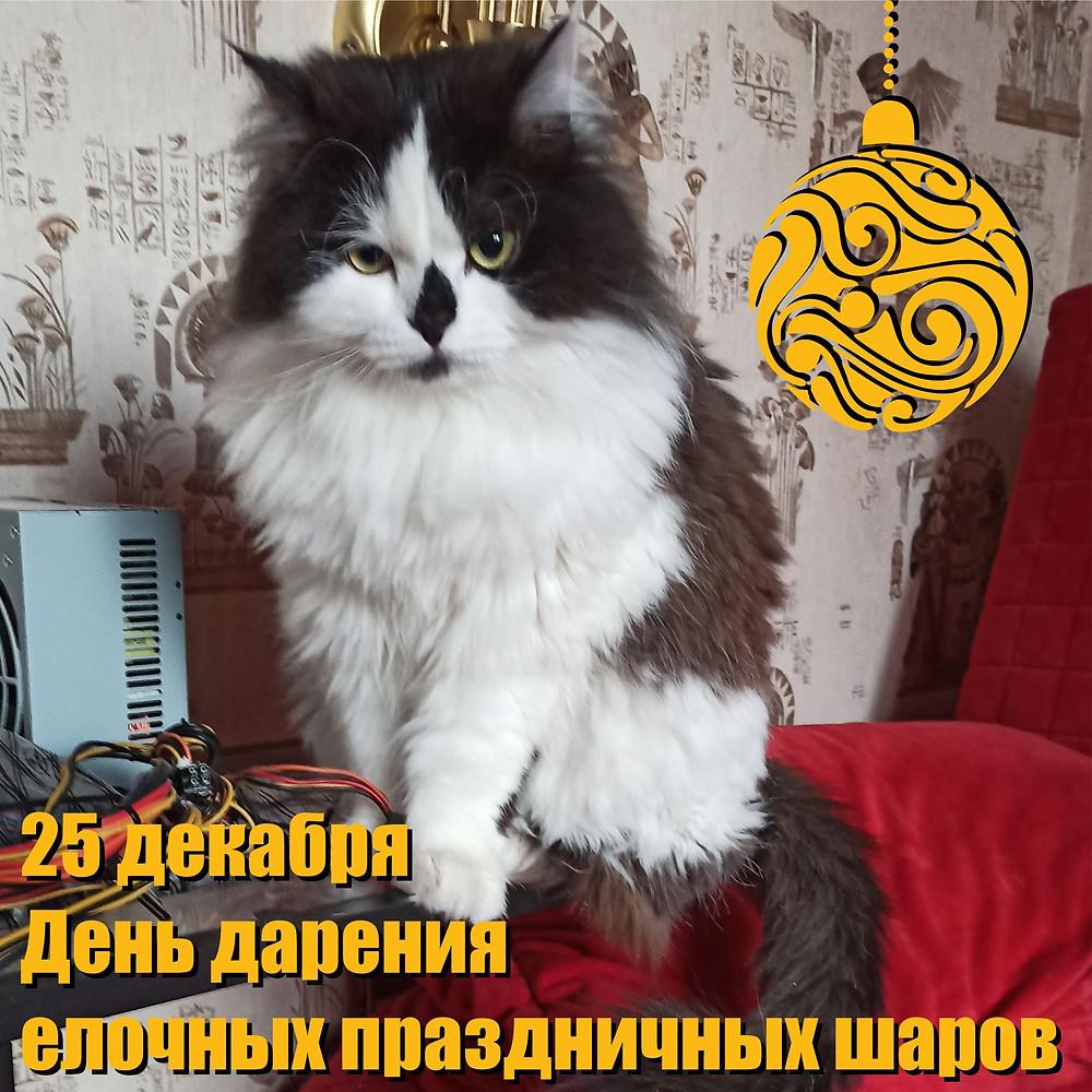 25 декабря 2020 г. День дарения елочных шаров