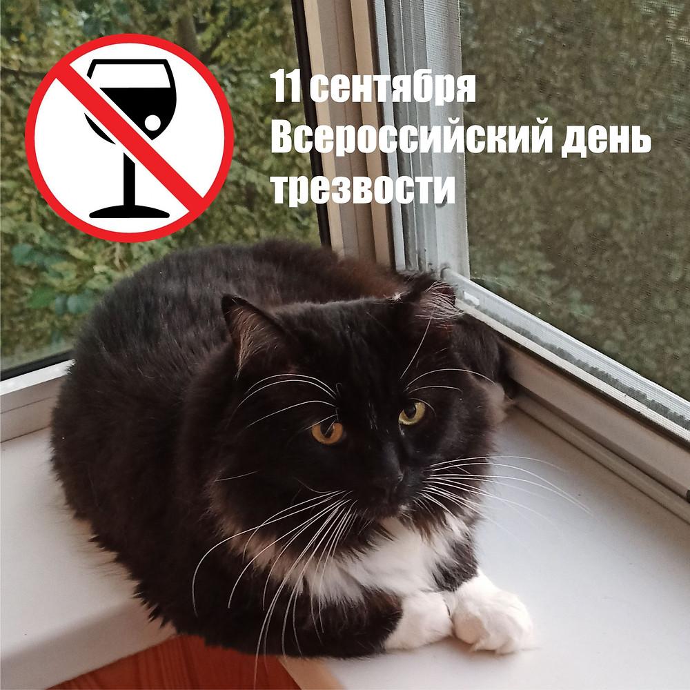 11 сентября 2020 г. Всероссийский День трезвости