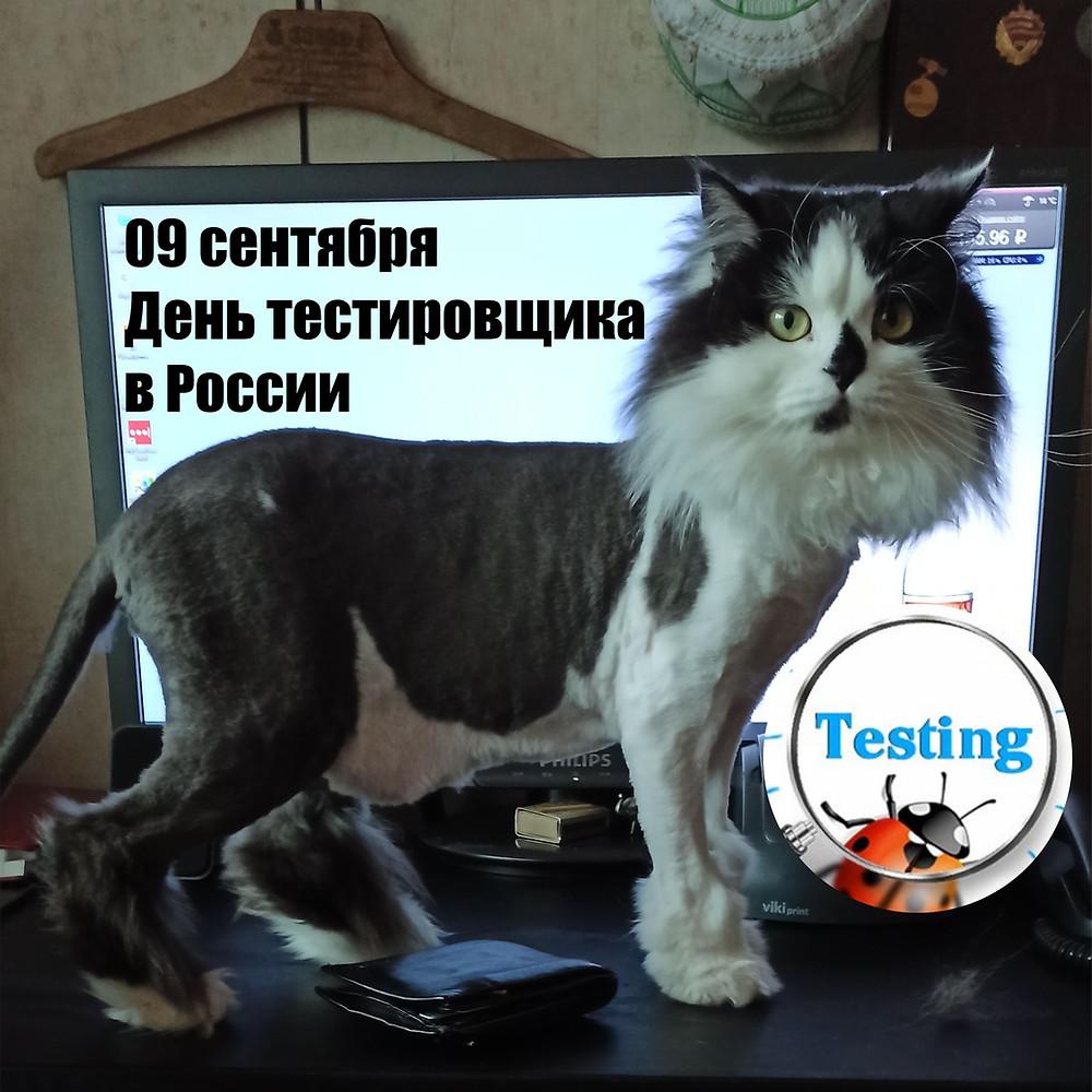 09 сентября 2020 г. День тестировщика в России