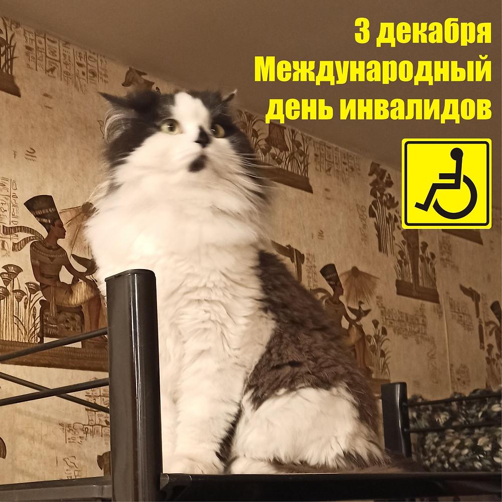 03 декабря 2020 г. Международный день инвалидов