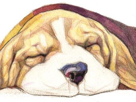 ОТСТАНЬ, УСТАЛОСТЬ! - Как победить синдром хронической усталости