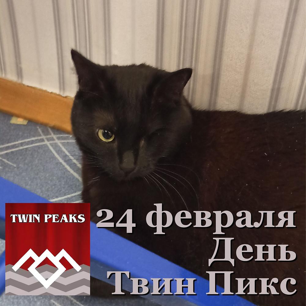 """24 февраля 2021 г.  День """"Твин Пикс"""""""