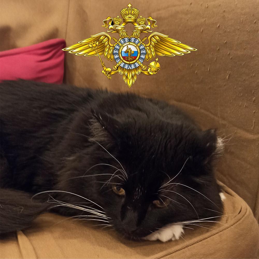 05 июня 2020 г. День образования российской полиции
