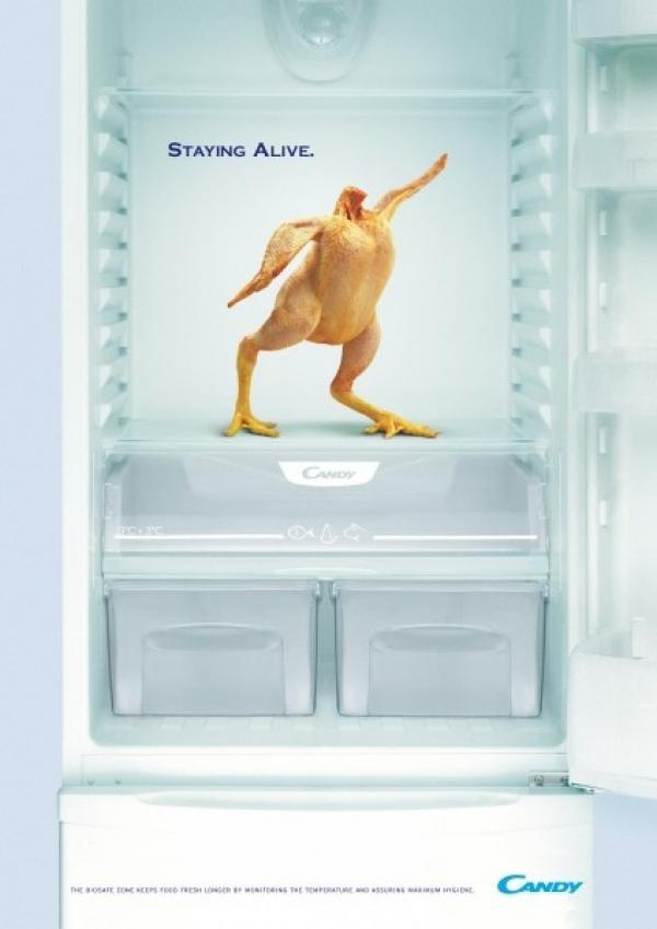 """Реклама холодильников Candy, которые способны оставить курицу """"в живых""""."""