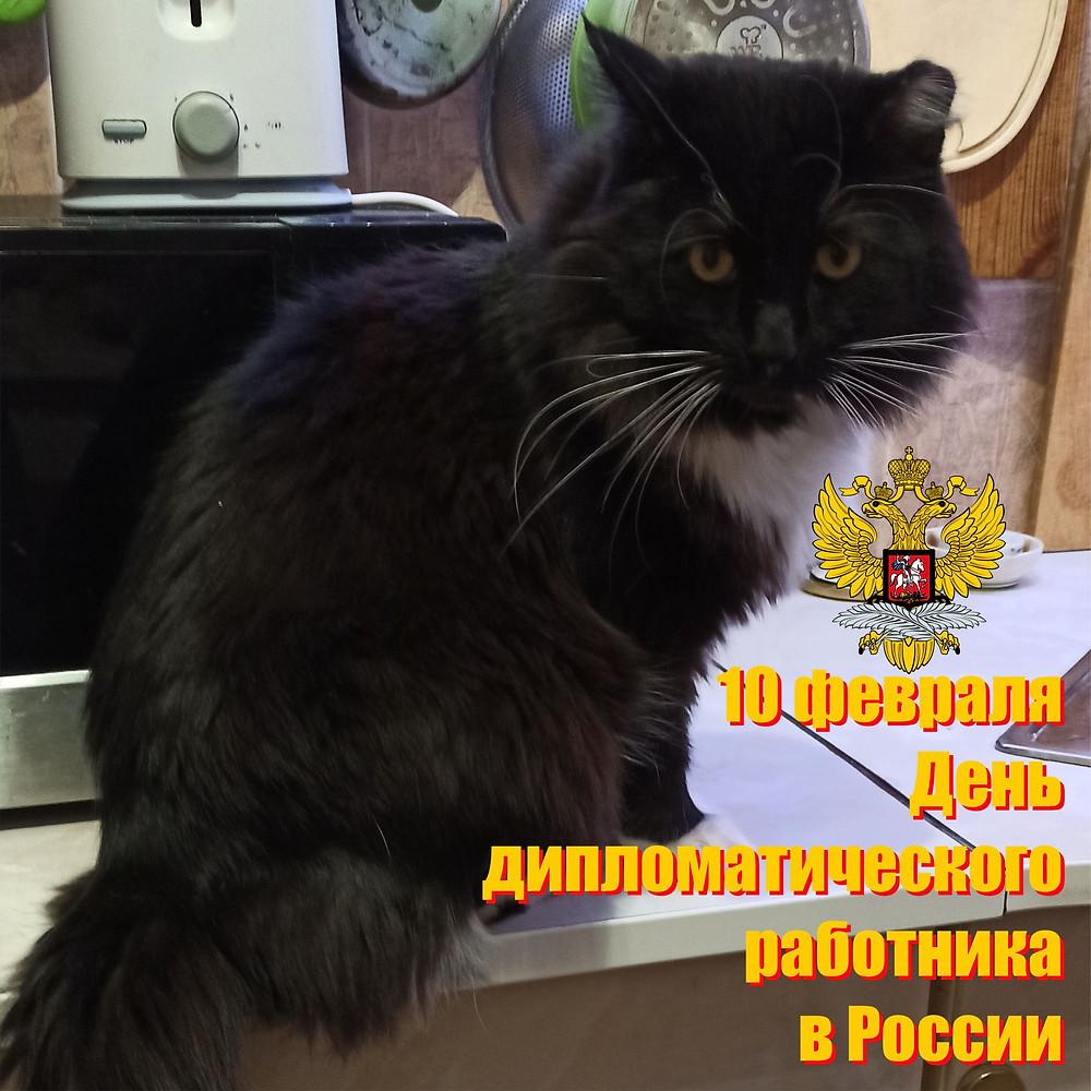 10 февраля 2021 г. День дипломатического работника в России
