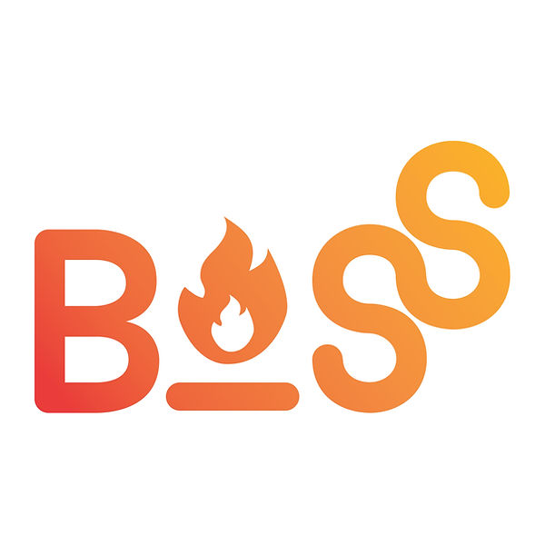 BOSS logo_2019_gradient.jpg